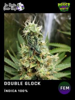 Double glock floreciendo